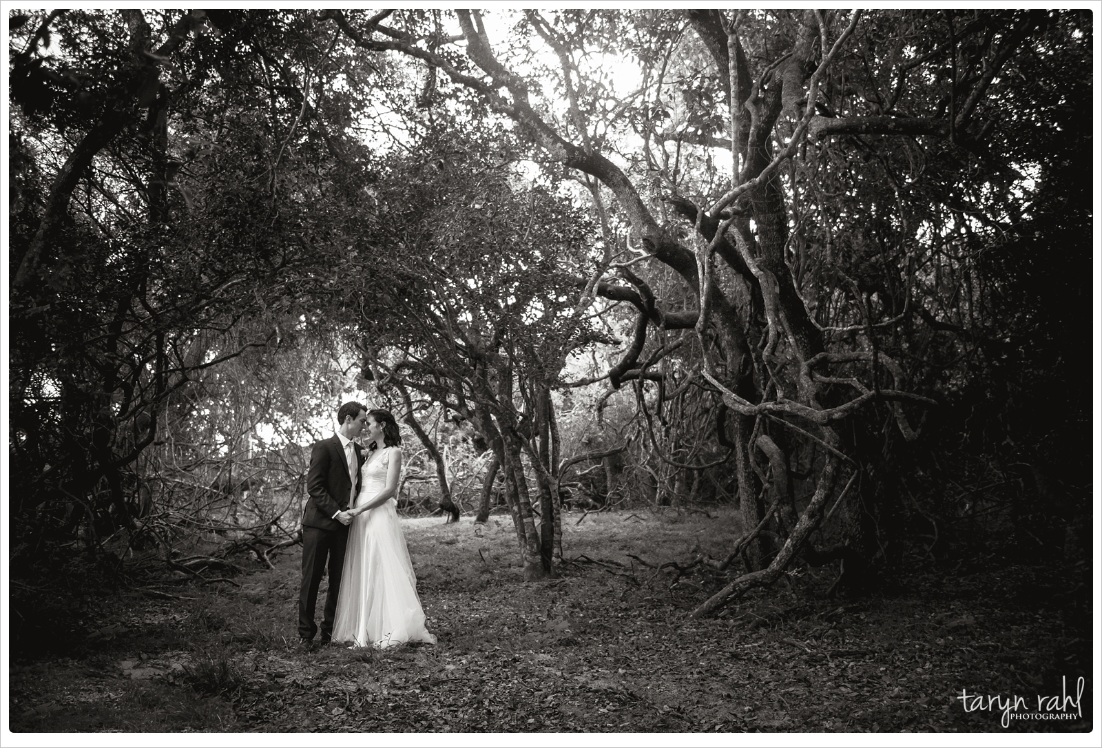 Megan and Justin | wedding at Oceana Reserve