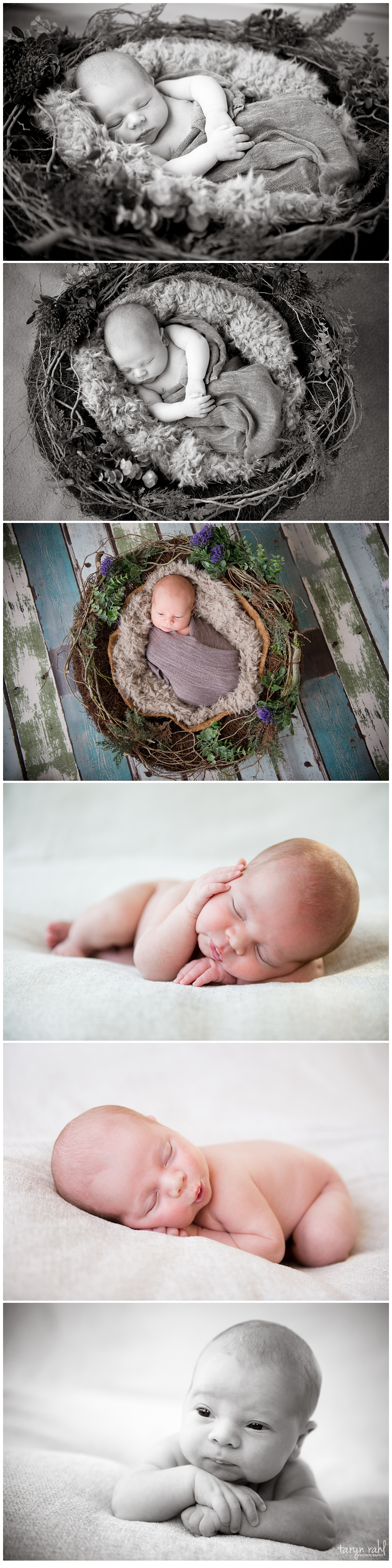 Baby Stuart | Newborn shoot